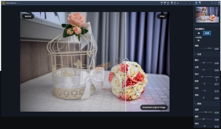 Topaz Adjust AI中文汉化版HDR渲染一键调出大片质感 人工智能图片编辑软件