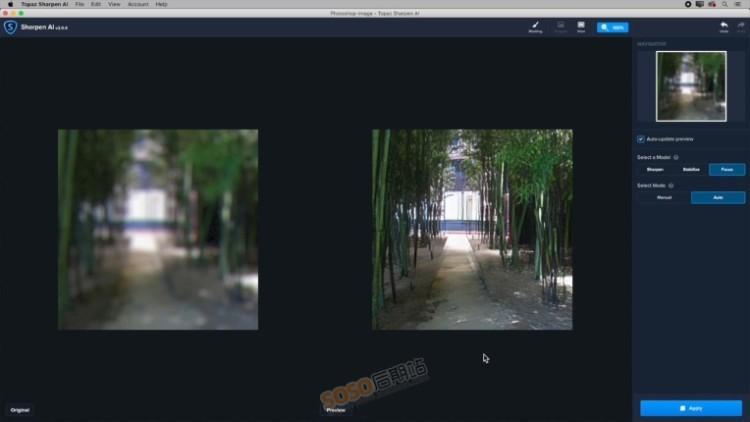 Topaz Sharpen AI 2.0.5中文版智能图片清晰锐化降噪软件WIN汉化版2020