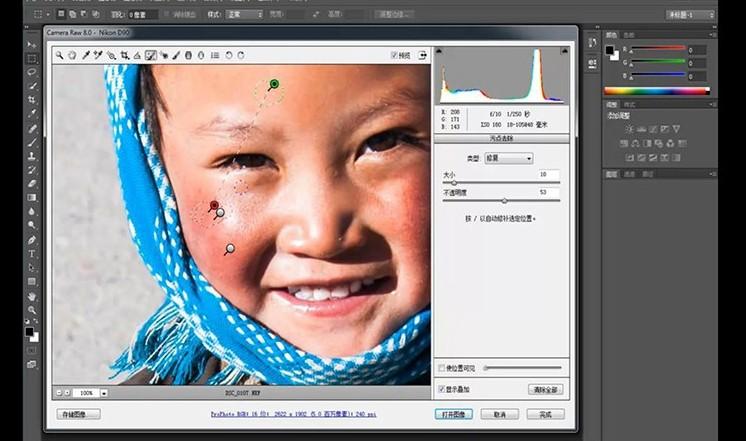 视频教程|Camera Raw中文教程 专业级调色实例教学(带原片和效果图)