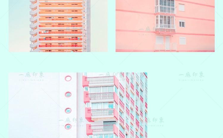 tangguo-9.jpg