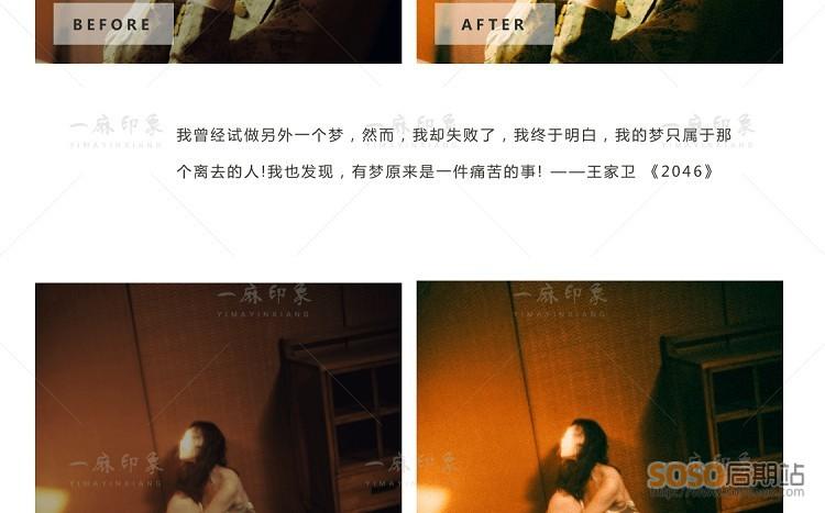王家卫LR预设 电影复古胶片港风怀旧视频调色PR/PS/FCPX/达芬奇/AE/LUT滤镜